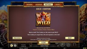 Gold-Canyon-Wild