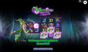Merlin's Moneyburst Slot Wild Symbols