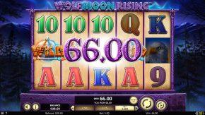 Wolf Moon Rising Rules Wild Win