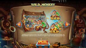 Pirates Plenty 2 Battle for Gold game rules wild monkey