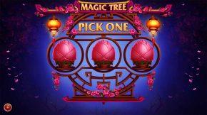 Magic Tree Bonus Pick