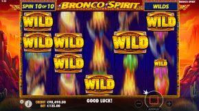 Bronco Spirit Sumbol