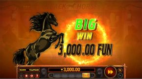 black horse deluxe Big Win