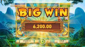 Toads Gift Big Win