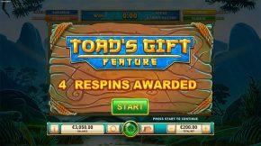 Toads Gift Wild