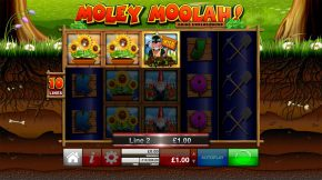 Moley-moolah-wild-win