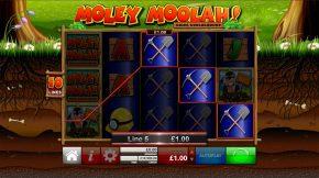Moley-moolah-win