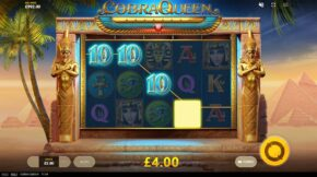 cobra-queen-ten-win