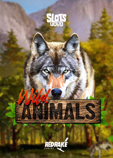 wild-animals-thumbnail