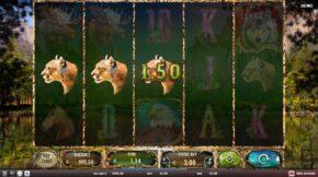 wild-animals-win2