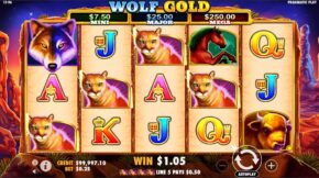 wolf-gold-win3